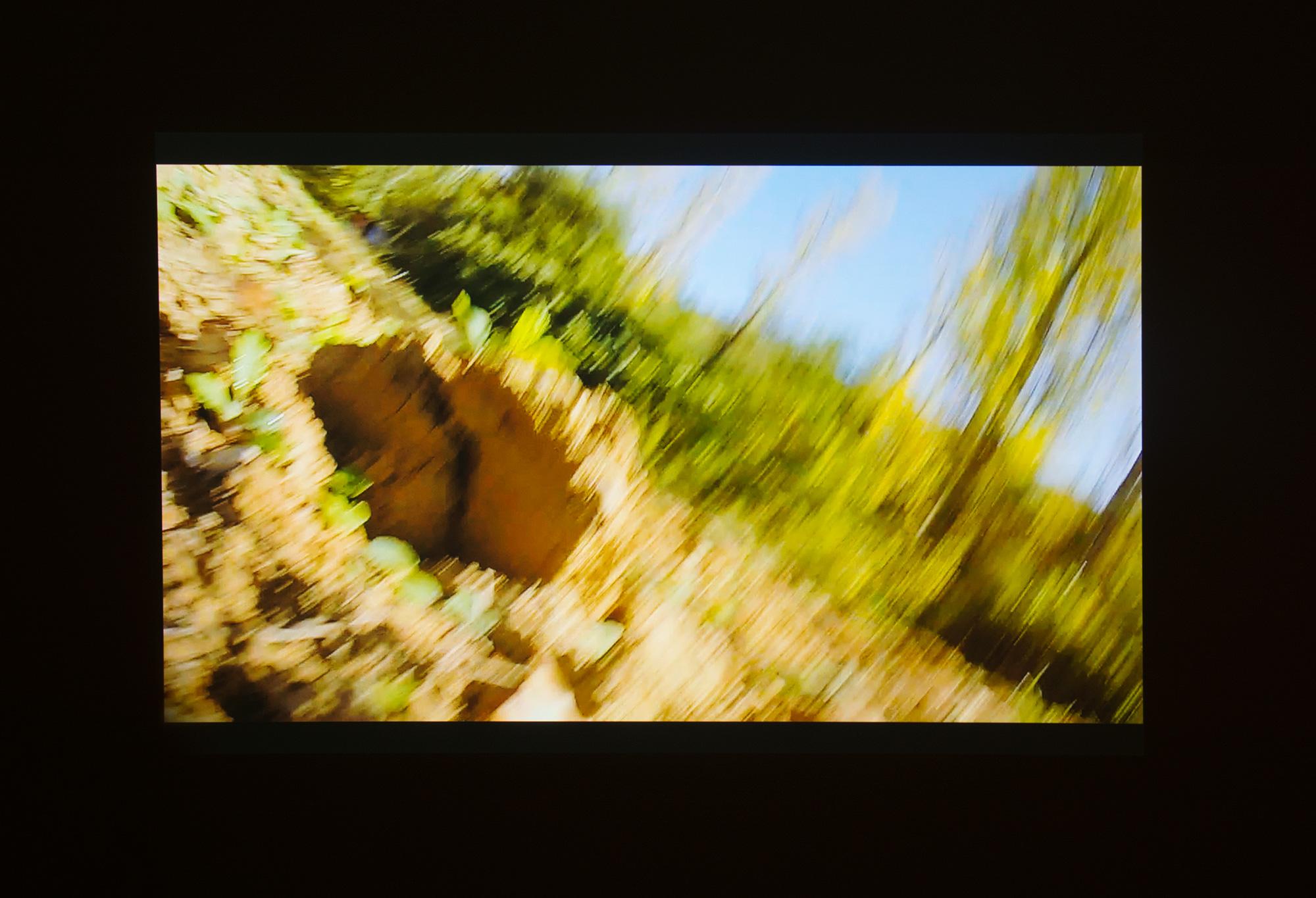 Jon Otamendi - La enorme manada